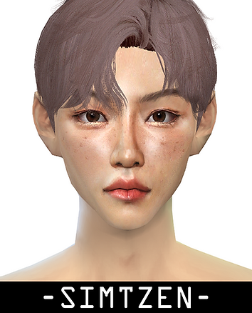 STRAY KIDS Felix Facemask Overlay