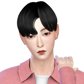 The Sims 4 : Huang Renjun NCT Dream [CC List]