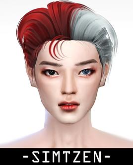 Hair Accessory 05 - Half Half Hair Dye