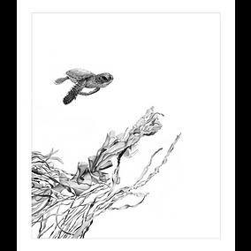 'Brave New World' Limited edition print by Wildlife artist David Dancey-Wood