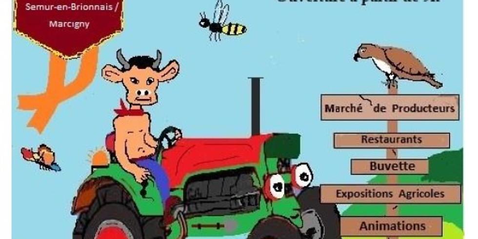 Fete de l'agriculture et du monde rural