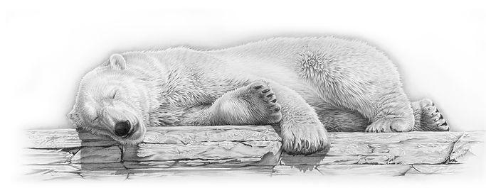 Arctic Dreams, by David Dancey-Wood.jpg