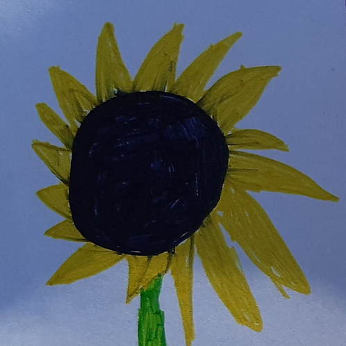 Donation to support the Sunflower Project