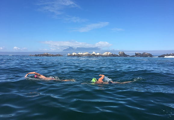 Open water swimming in Cape Town with Table Mountain