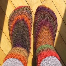 House Socks by Kelly