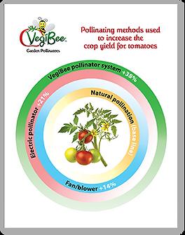 VegiBee Crop Chart Presentation