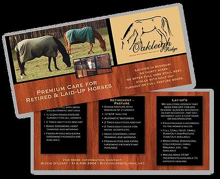 Oakleigh Ridge Handout Brochure