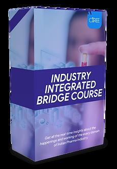 Bridge Course.png