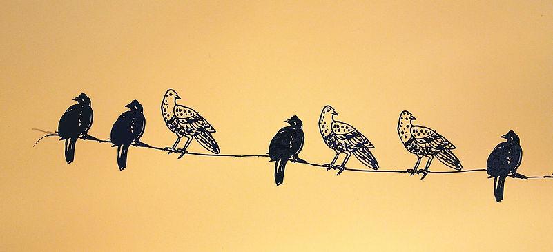 c)birds on a wirewall installation.jpg