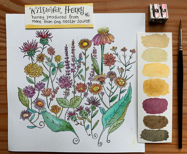 Wildflower Illustration