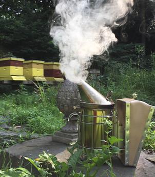 Defects in Honey