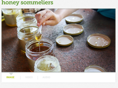 Italy is giving the world honey sommeliers