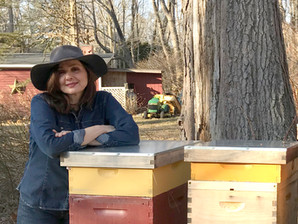 Valentine's Day: 5 Reasons to Fall in Love with Honeybees