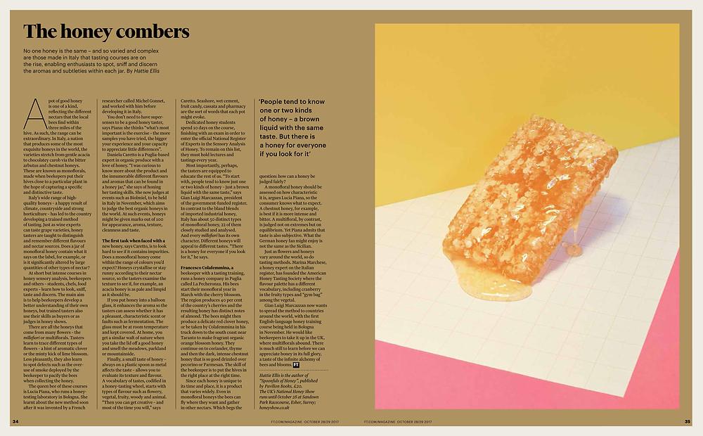 The Financial Times London by Hattie Ellis