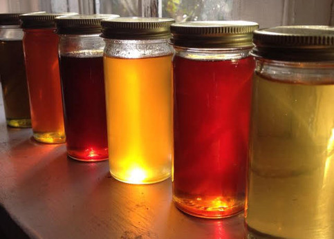 Intermediate Honey Tasting