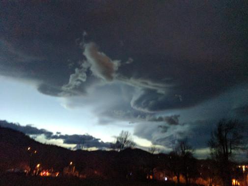 Bristle sky