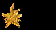 SHINE Award Logo.png