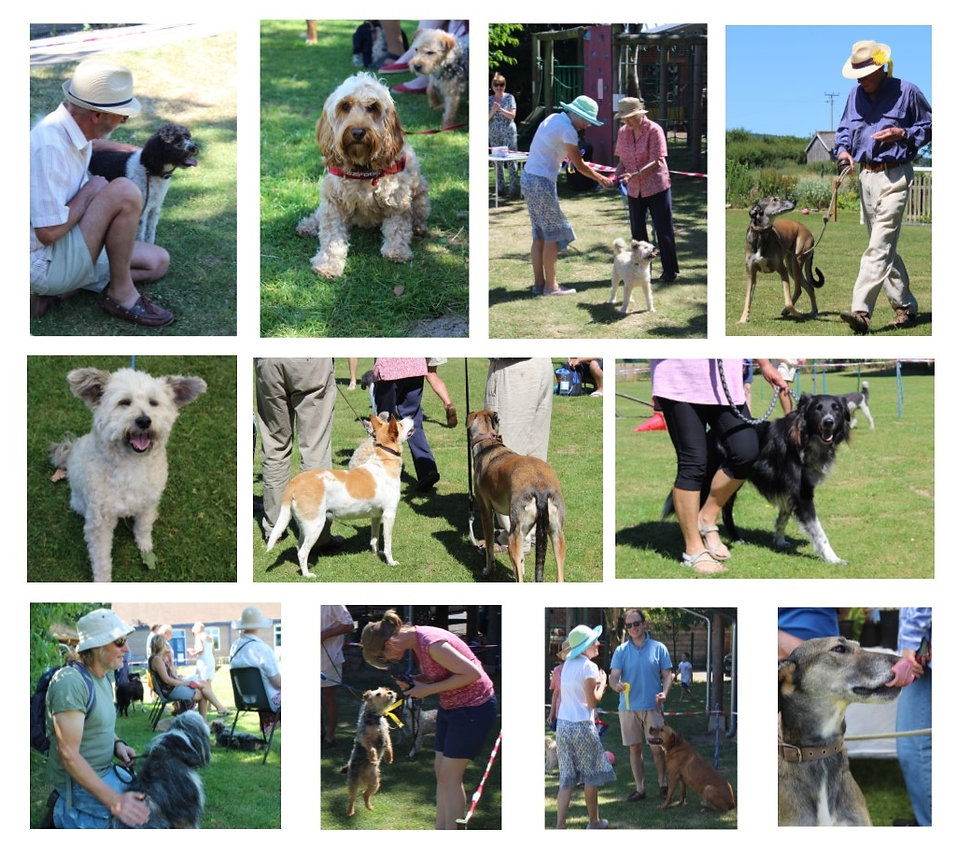Diddlebury Dog Show 2018.jpg