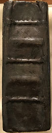 Chatterton Family Bible Spine.JPG