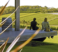 Mornington Peninsula Winery tours include strawberry picking at Sunny Ridge Strawberry Farm