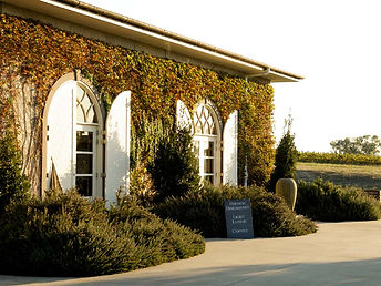 hens day winery tours yarra valley