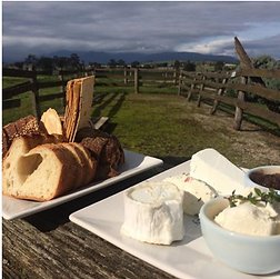 yarra valley private family tours