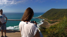 Teddys Lookout  - Great Ocean Road Tour