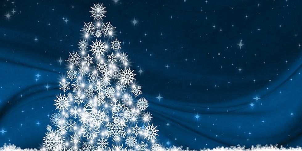 Halstead Christmas Lights Switch on