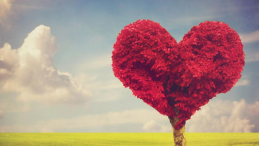 heart-tree_edited.jpg