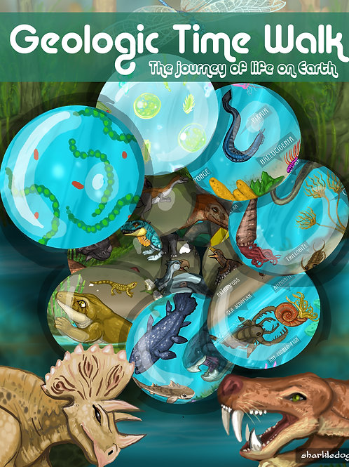 Geologic Time Walk - The Journey Of Life On Earth