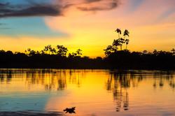 Río_Amazonas