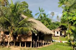 Recintos indigenas de Amazonas