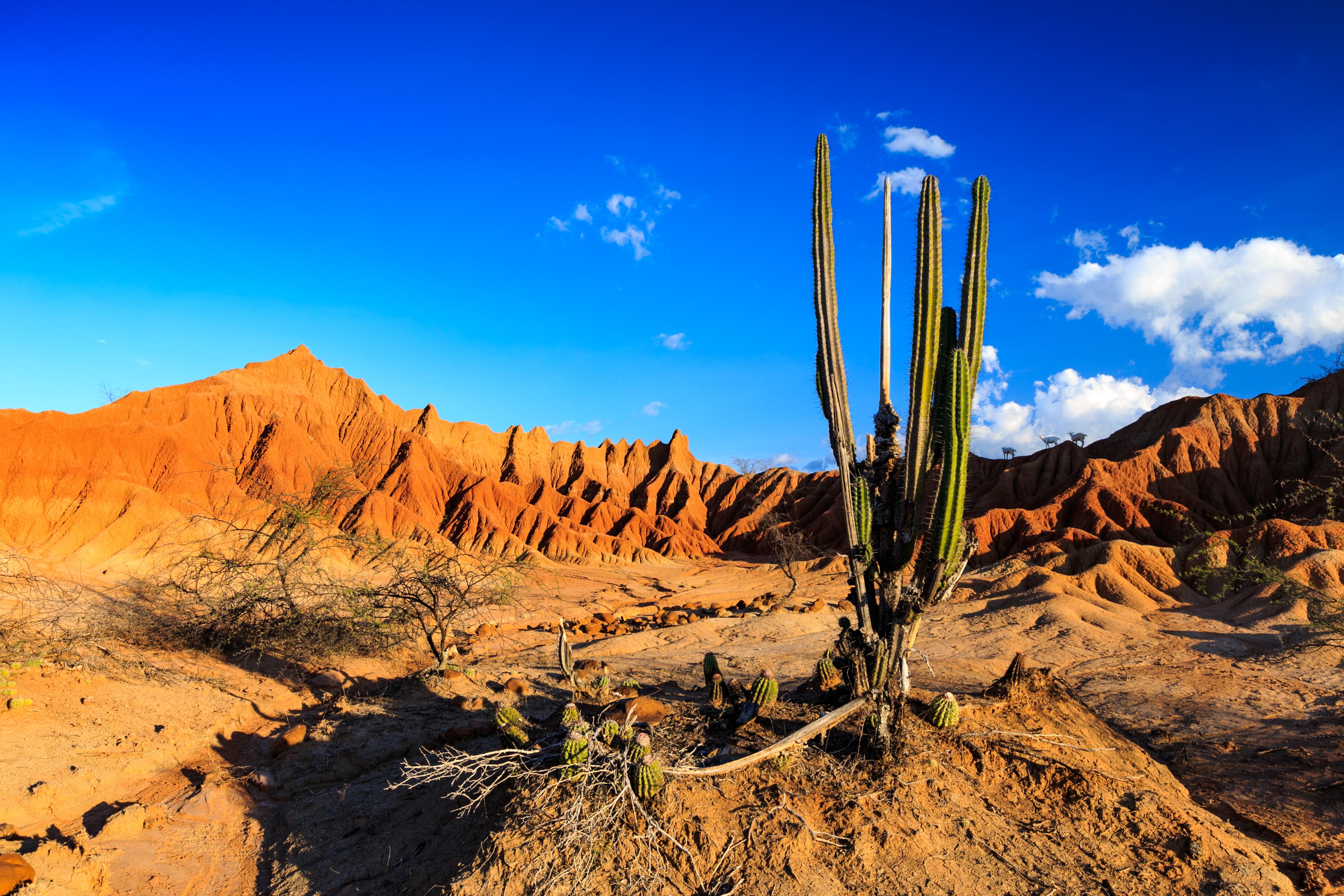 Desierto tatacoa Huila