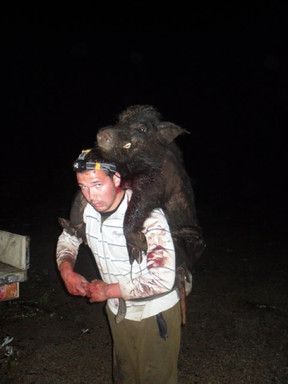 pig-hunting-2.jpg