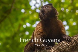 2019-05-15 French Guyana POW (00) 452A70