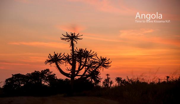 2018-05-20 Angola (POW) 67 9C2A3890.jpg