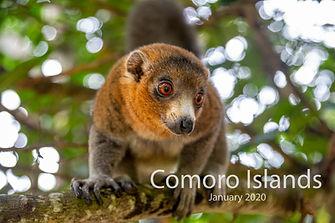 2020-01-30 COMORO (POW) 00 452A3614.jpg