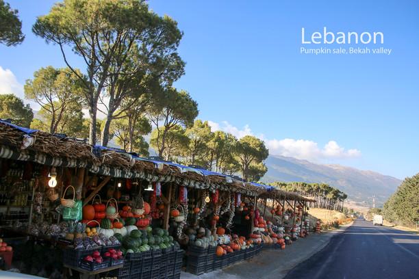 2017-11-10 Beiruth (20) 9C2A0297.jpg
