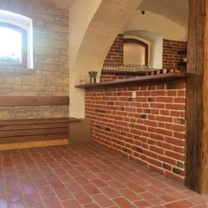 Castle Brick 313 + 314