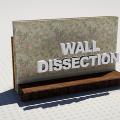 Wall Dissection