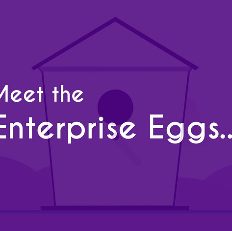 Enterprise Eggs