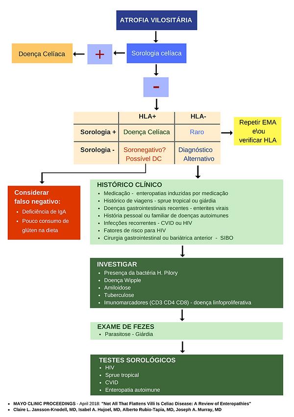 algoritmo de investigação de atrofia vilositária na doença celíaca
