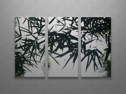 Bamboo grove triptych wall art