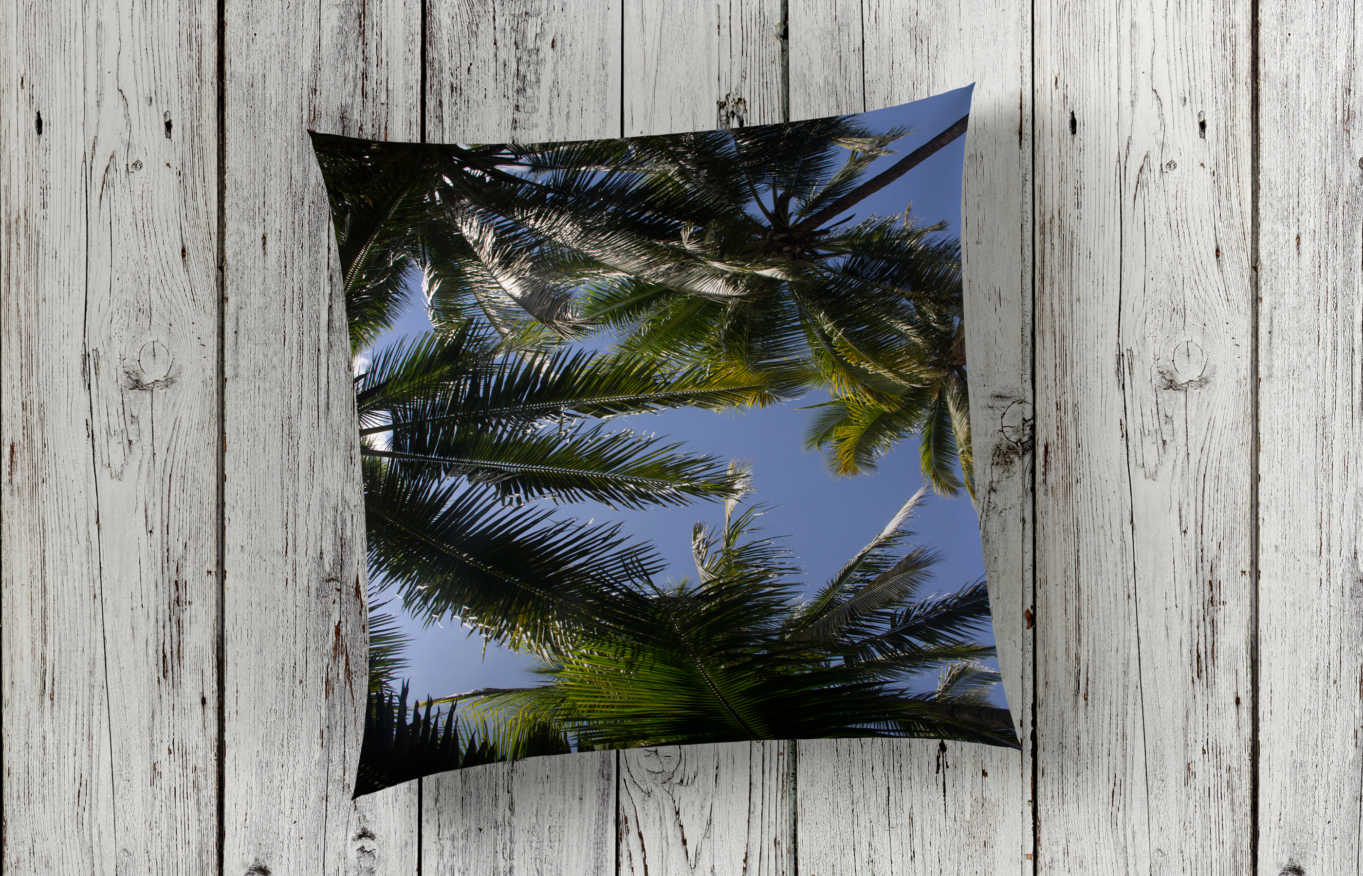 Palm trees Arial Design