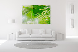 Fan palm wall art