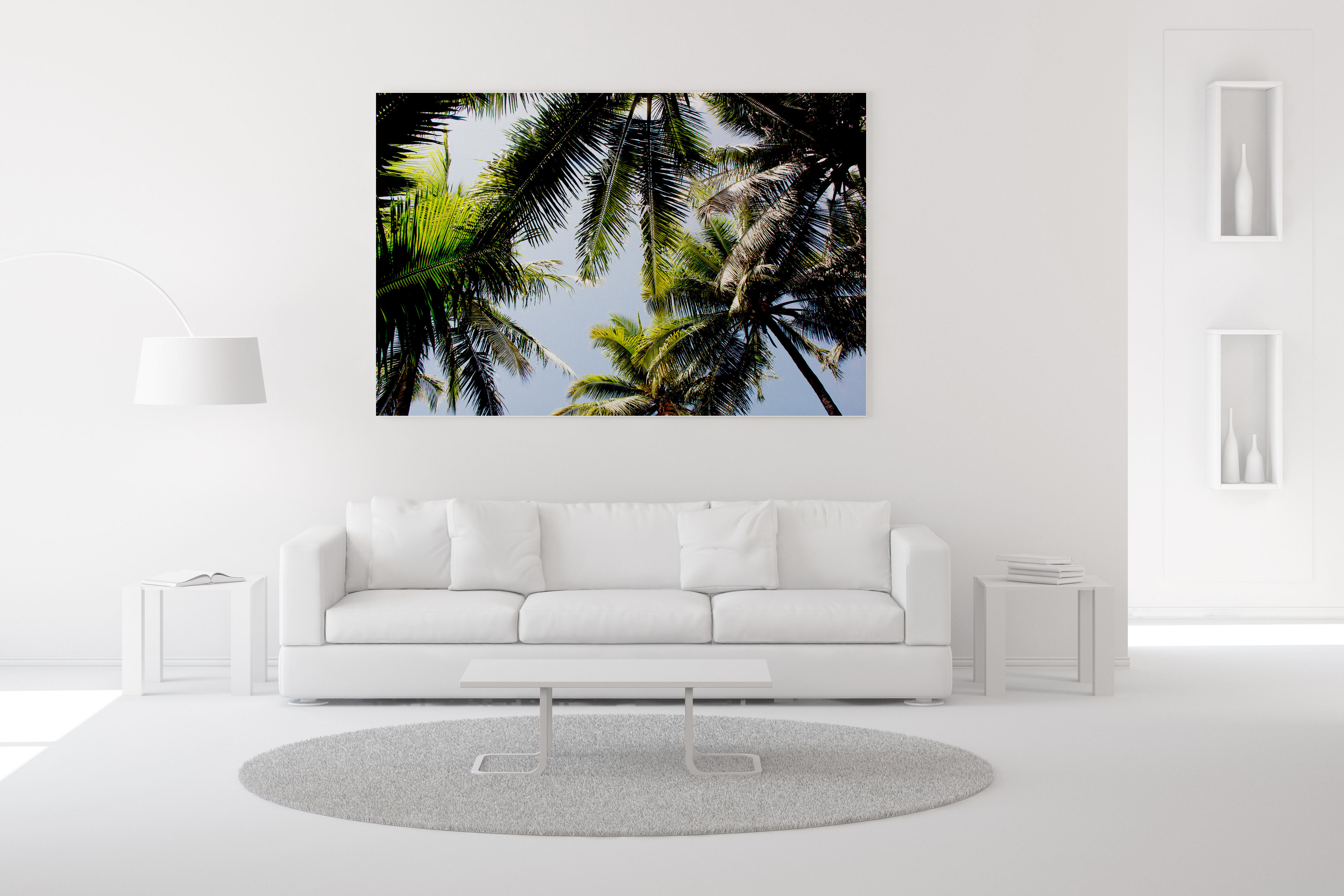 Aerial Coconuts View Wall Art