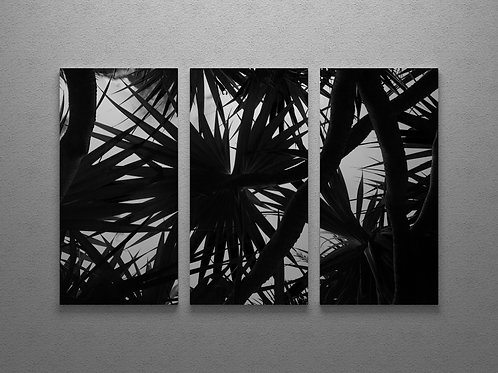 Vacoas Leaves Triptych Wall Art
