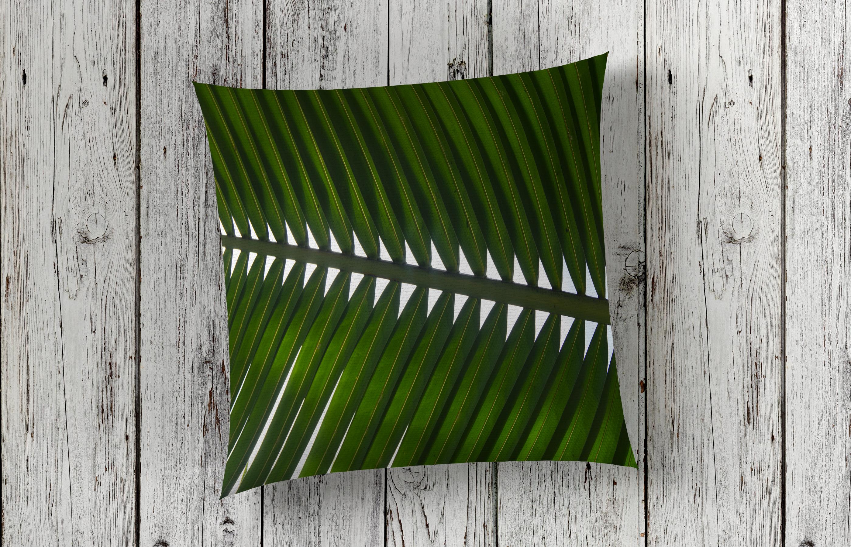 Single Palm Frond