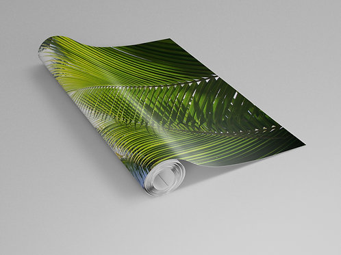 Double Palm Frond Wall Paper