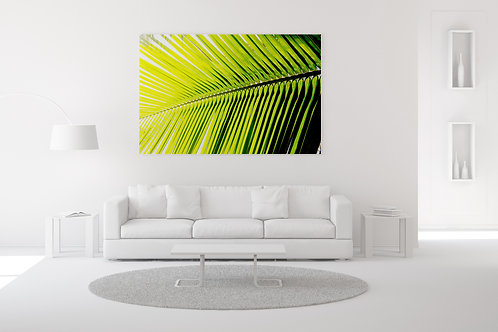 Single Palm Frond Wall Art